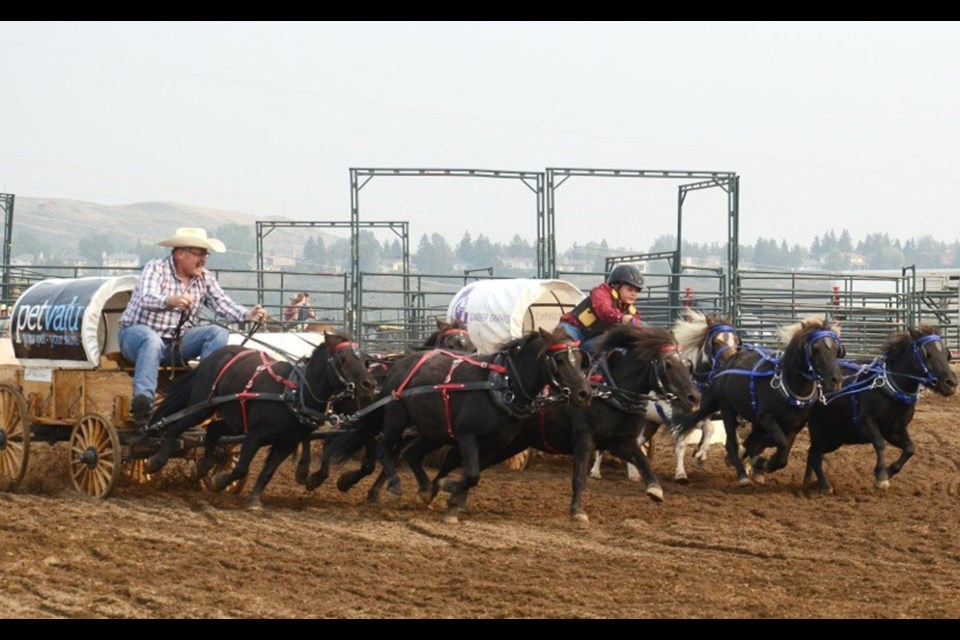 The Cochrane & District Agricultural Society is back with its seventh annual Cochrane Fair, Aug. 16 to 18. The event will feature mini-chuckwagon races, dog agility shows, motorcycle stunts, a midway and more.  Photo Submitted/For Rocky View Publishing
