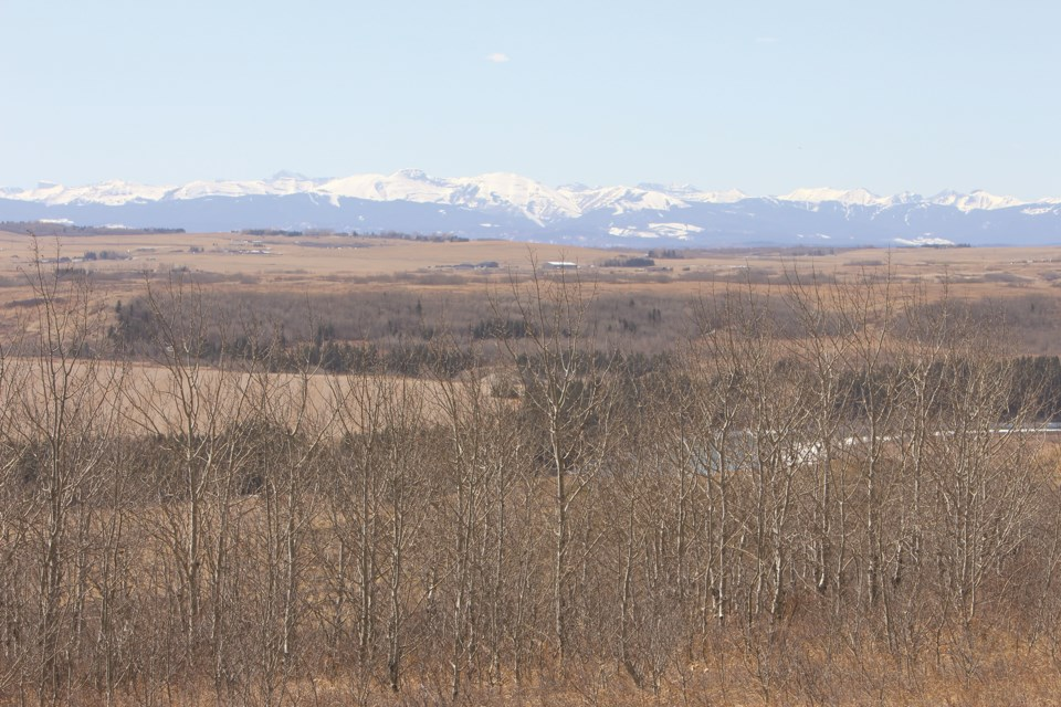 The Rocky Mountains are nestled behind the rolling hills and trees at Glenbow Ranch Provincial Park on a breezy April afternoon.