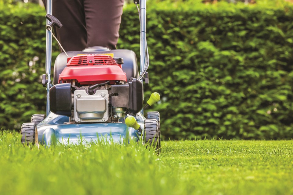 Landscaping companies are forecasting a difficult 2020 season, with a drop in clients due to the pandemic. 