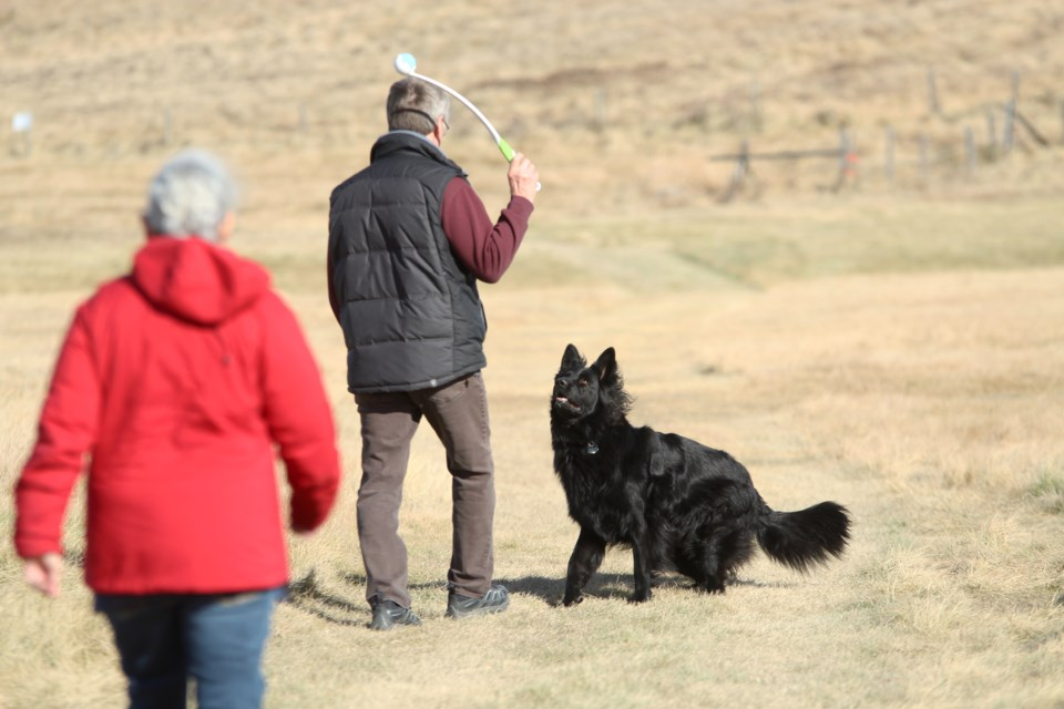 A pair of dog-walkers in Sharp Hill Park took advantage of sunny skies and mild temperatures Oct. 24, taking their two pooches for a stroll. Photo by Scott Strasser/Rocky View Publishing