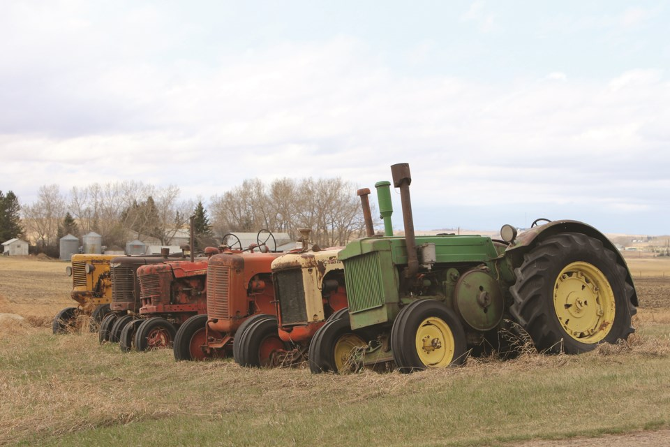 A trail of retired tractors are lined up along the entrance to a farmer's property in Rocky View County.