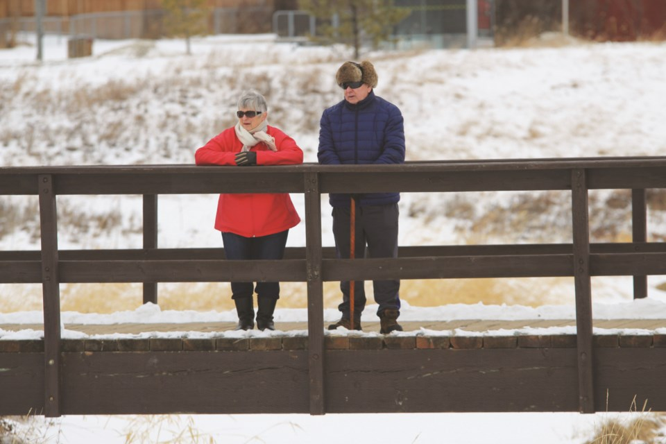 Newfoundlanders Claudette (left) and Len were out for a walk at Nose Creek Regional Park Feb. 5, pausing for a few moments on one of the park's bridges. Photo: Scott Strasser/Airdrie City View
