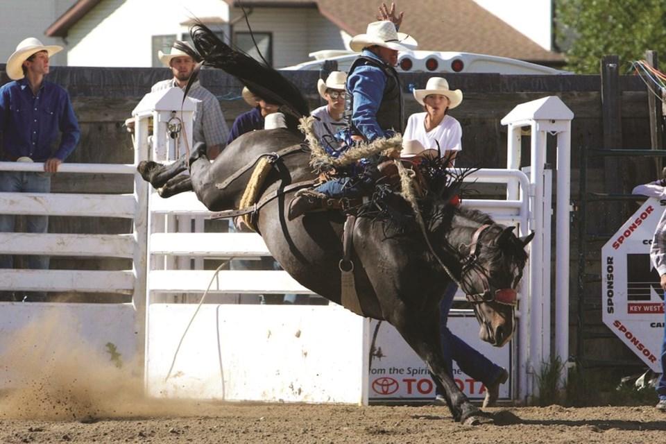 rodeo-web4