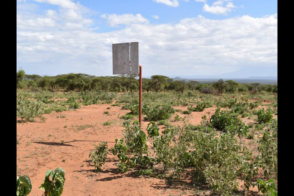A Springbank athlete is part of a group of Carleton University students and athletes working  to bring a basketball court to this spot in Langido, Tanzania next spring. Photo Submitted/For Rocky View Weekly