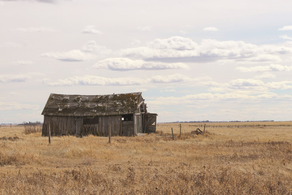 A weathered shed from days gone-by remains standing in a pasture amidst a cloud-filled sky along road 566 just east of Kathryn.