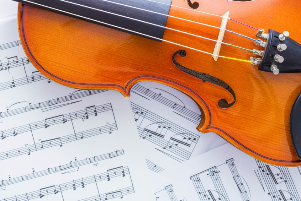 Rocky Mountain Symphony Orchestra's next concert will honour the music of Ludwig van Beethoven. Photo: Metro Creative Connection