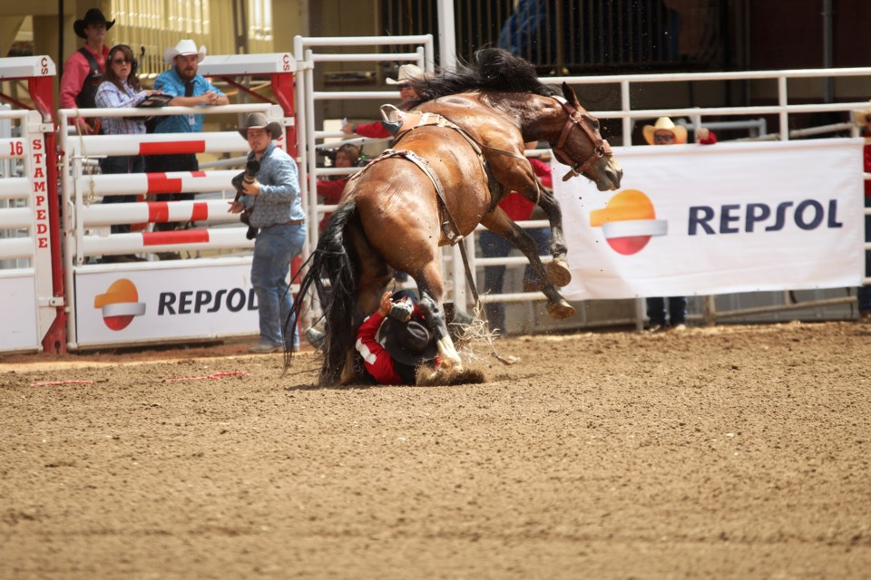 Airdrie bareback rider Jake Vold's fourth ride at the 2019 Stampede ended when he was bucked off and stepped on by his horse, resulting in a knee injury that brought an early end to his competition.  Photo by Scott Strasser/Rocky View Publishing