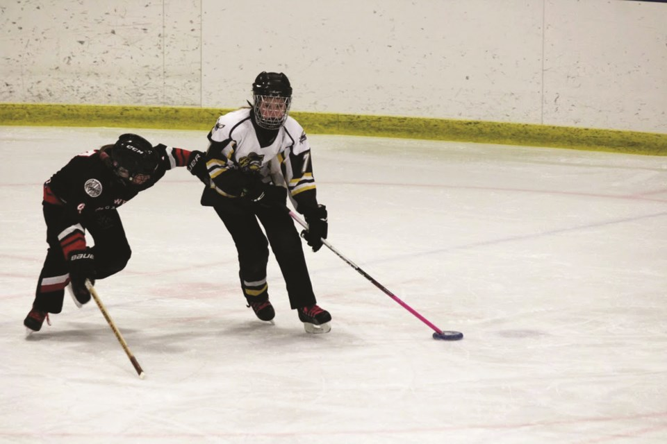 The Airdrie Ringette Association has 17 teams under its banner for the 2020-21 season. File photo/Airdrie City View.
