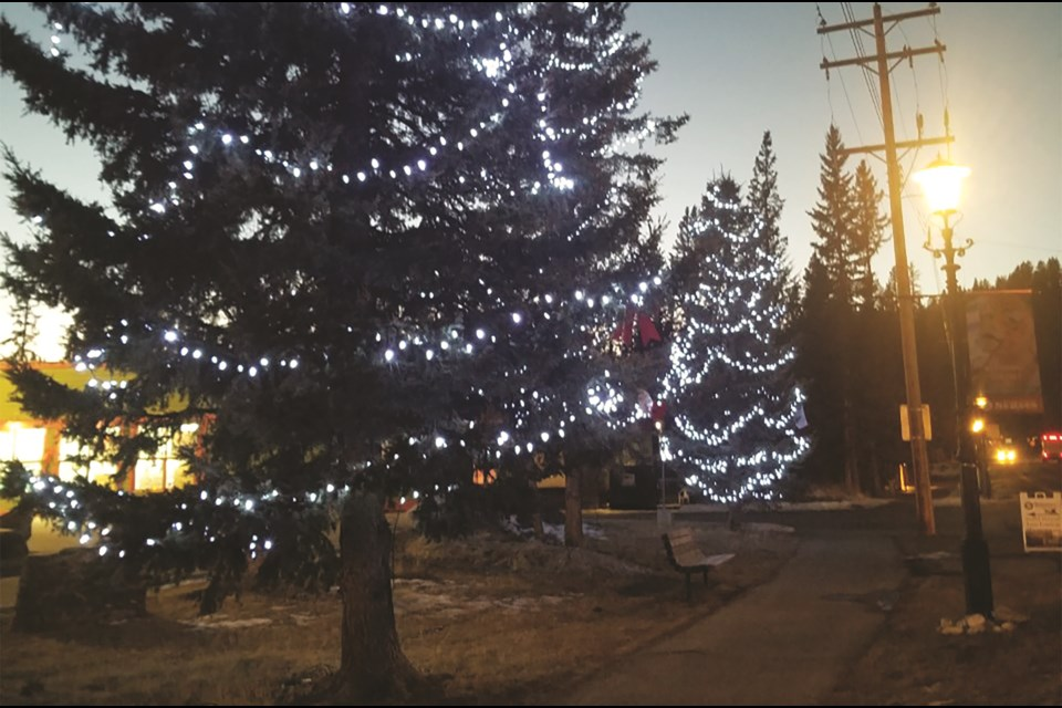 Bragg Creek's Spirt of Christmas festival was held Dec. 5. Due to the COVID-19 pandemic, the annual event was limited to an outdoor market and ceremonial Christmas tree lighting. Photo submitted/For Rocky View Weekly
