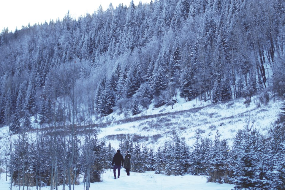 After 13 months of closure, Big Hill Springs Provincial Park, located 10 kilometres north of Cochrane, has reopened to the public.