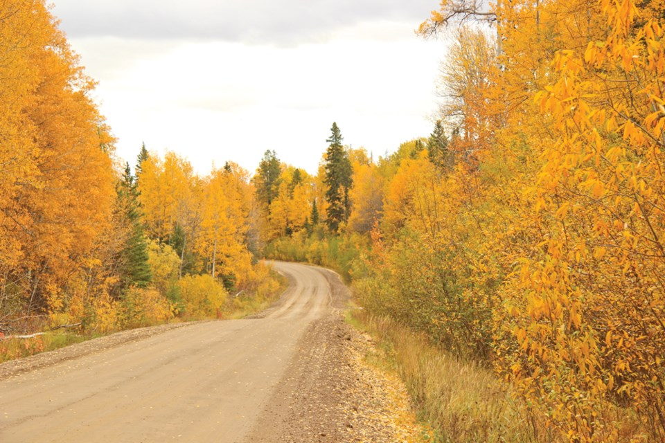 Fall colours were ablaze during a recent trip in to Kelly Lake.