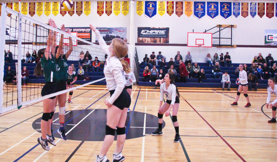 NPSS Volleyball-2019