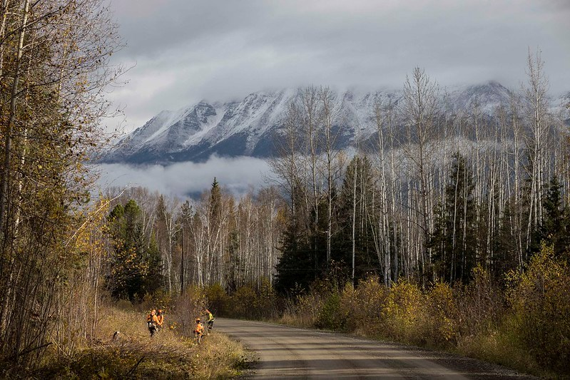 BC-Forest-Service-Road