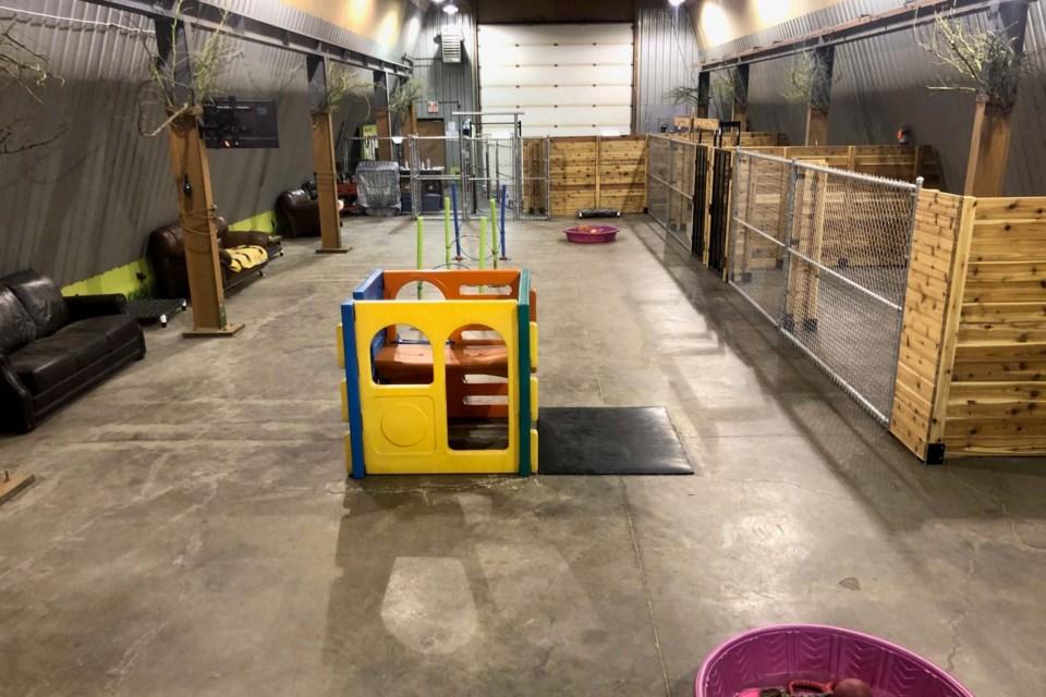 Steele House Doggy Daycare