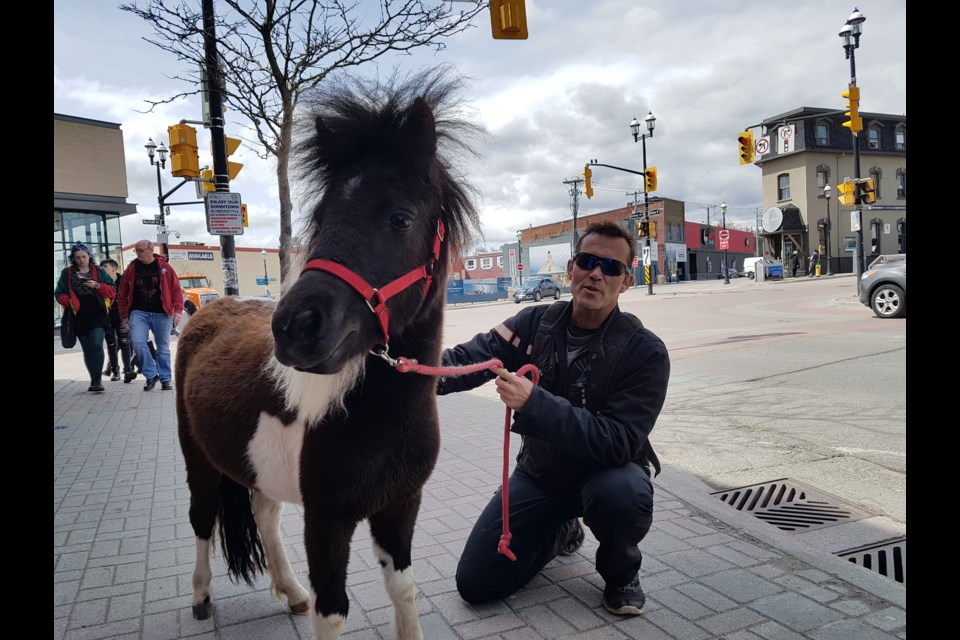Chris Murray and Oreo enjoy the beautiful weather in downtown Barrie on Tuesday, April 30, 2019. Shawn Gibson/BarrieToday