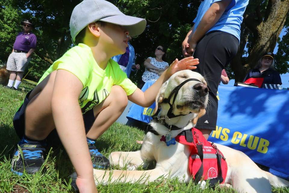 Six-year-old Nahuel Crizul gives Cal some love at the Pet Valu Walk for Dog Guides fundraising event held at Shear Park in Barrie in association with the Lions Foundation of Canada Dog Guides on Sunday, May 27, 2018. Kevin Lamb for BarrieToday.