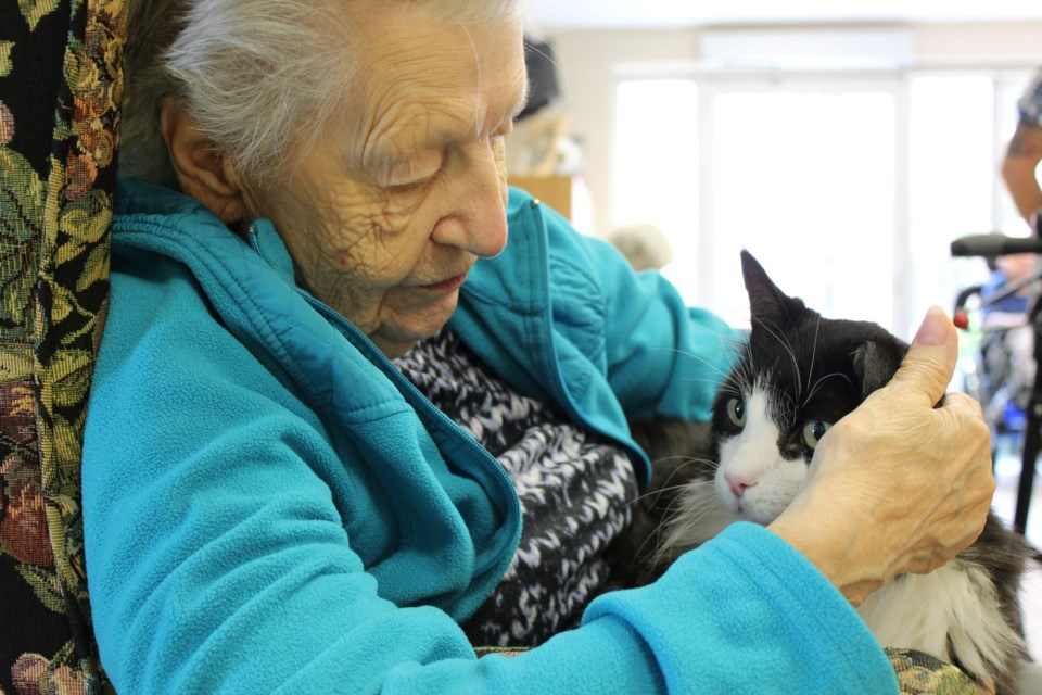 Roberta Place Long-Term Care Home resident Verna Mullen with Oscar the Cat. Photo supplied