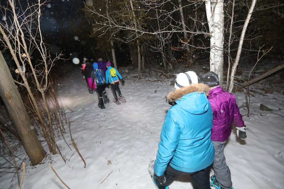 Visitors trudge through a light snowfall with headlamps on at the Snow Valley Snowshoe Trails on the grounds of Snow Valley ski resort on Saturday,  Jan. 13, 2018. Kevin Lamb for BarrieToday.
