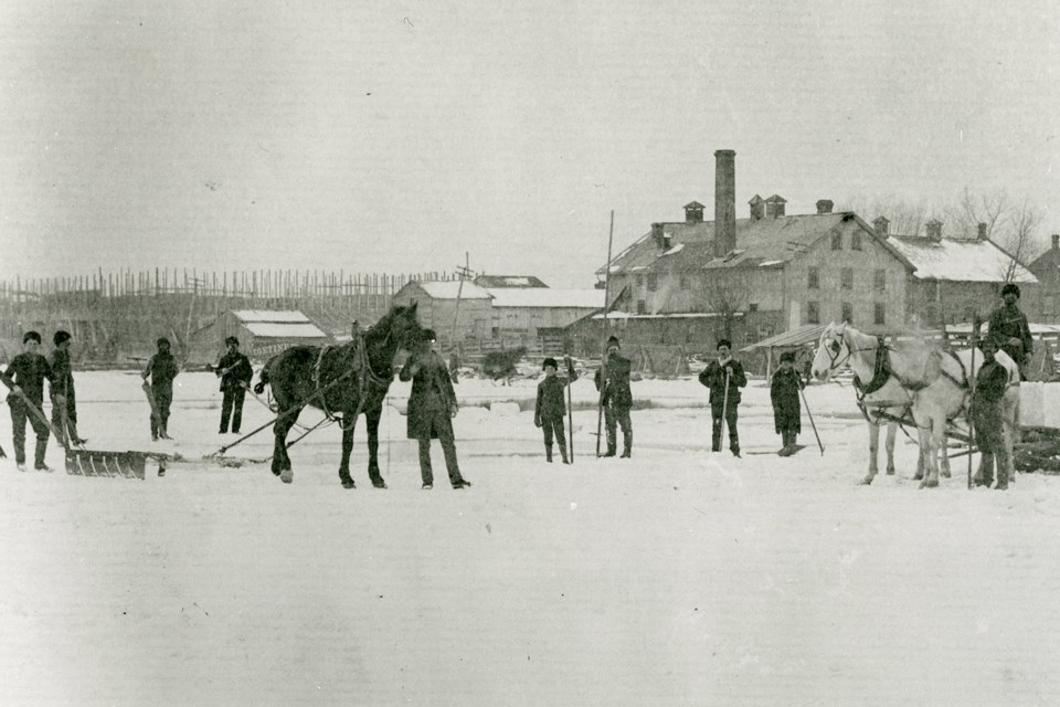 Kempenfelt Bay near Barrie was a busy place during the annual ice harvest. Courtesy of Simcoe County Archives/Livingstone Collection