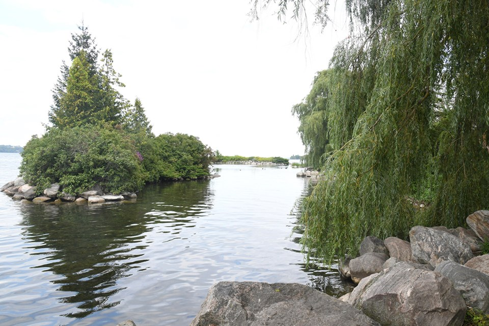 Rotary Islands, located in Allandale Station Park along the south shore of Kempenfelt Bay, is a haven for wildlife.