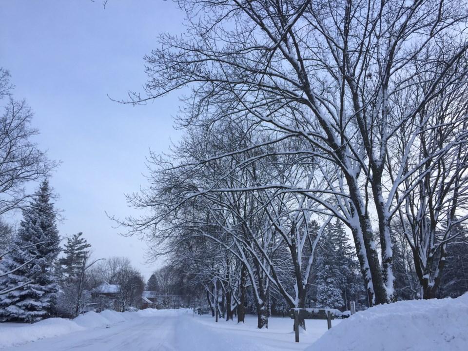 winter shear park