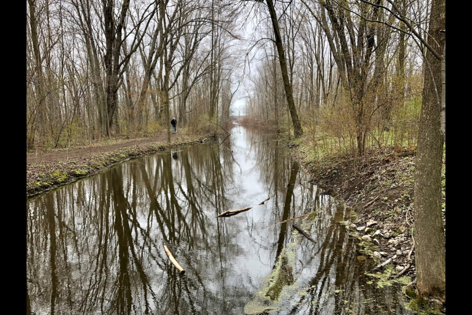 TheTiny Marsh Provincial Wildlife Area, located northwest of Elmvale, is known as a mecca for bird watchers but also offers plenty of sights for hikers and paddlers.
