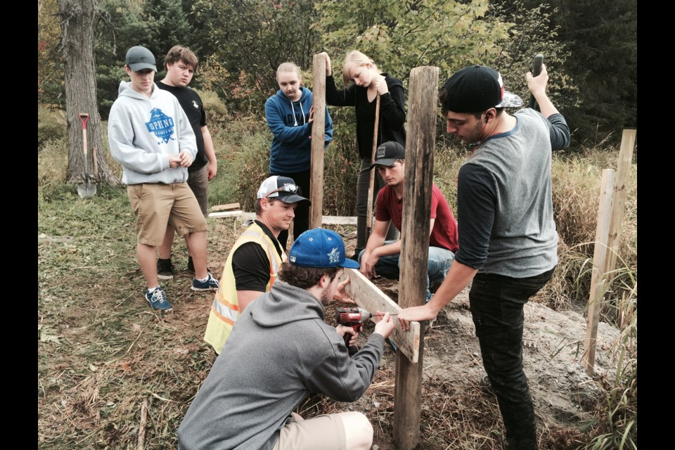 Specialist High Skills Major Business students from three North Bay high schools build artificial nesting mounds for turtles on endangered species list