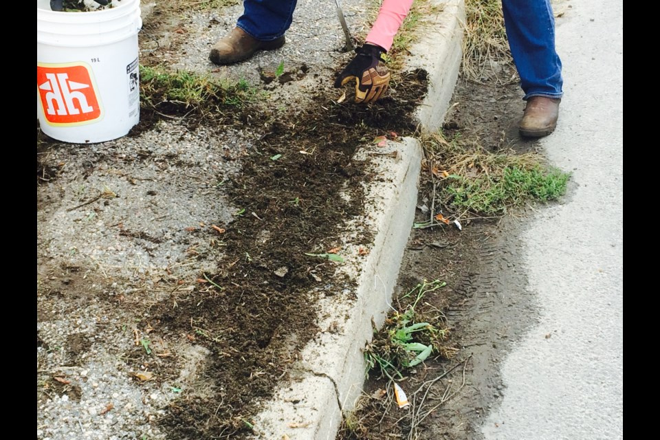 Getting rid of unsightly weeds