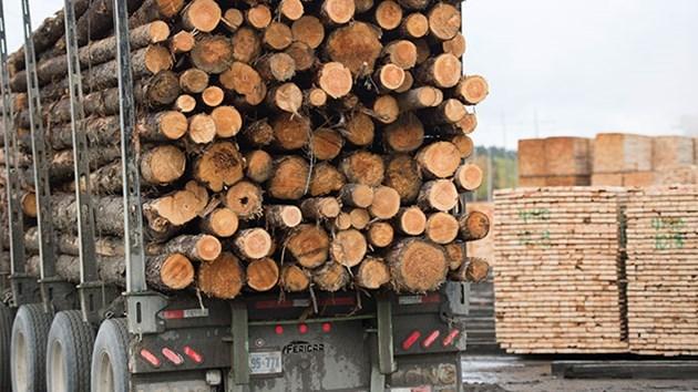 lumber truck eacom 2016