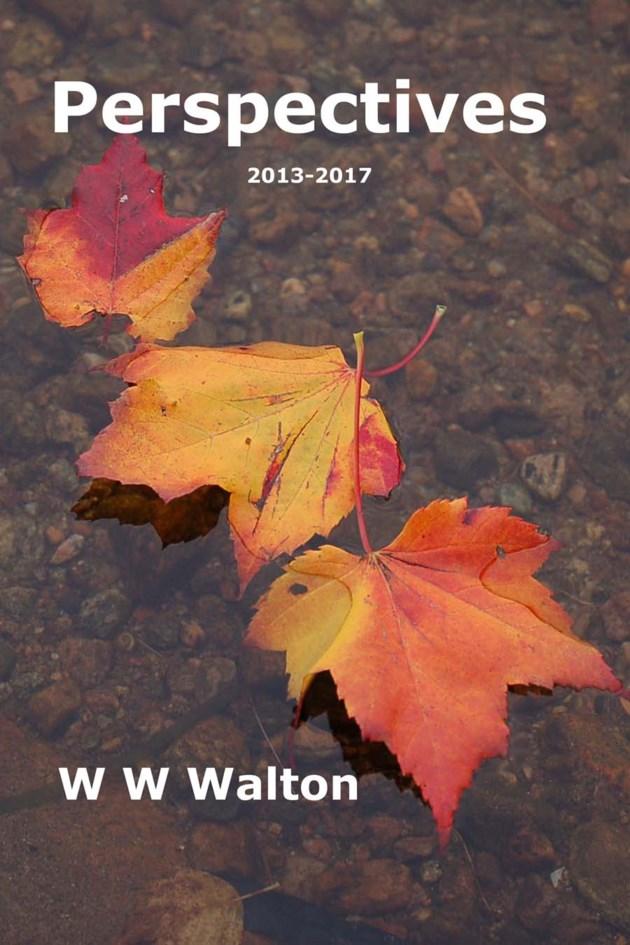 20180210 perspe walton