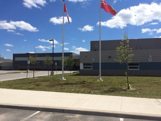 Almaguin highlands school turl 2015