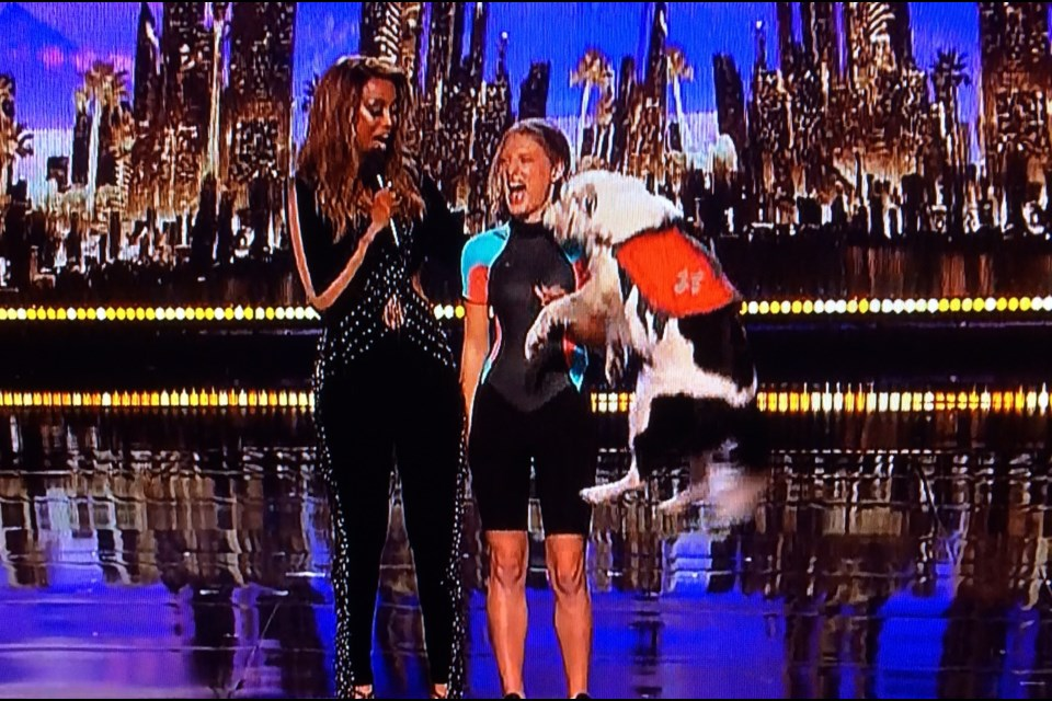 Hero jumps for joy after learning he and Sara have made it to the finals of America's Got Talent.
