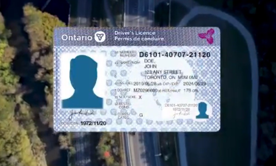 new ontario driver's licence