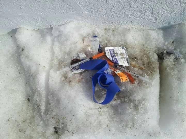 2019 needles in snow turl