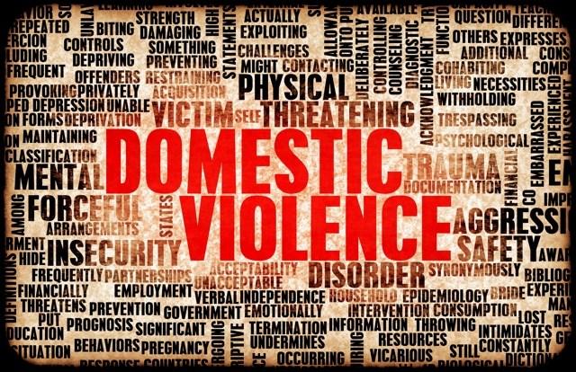 2015 12 1 Domestic Violence 2