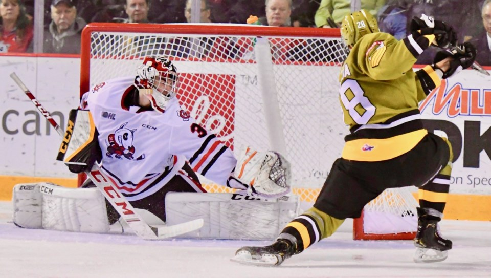 Struthers takes a shot on Sbraglia in the first period against the Niagara IceDogs.