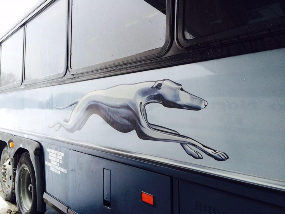 greyhound bus 1 turl 2016