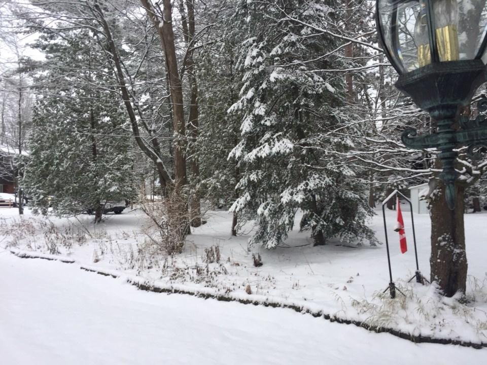 20181112 winter scene turl