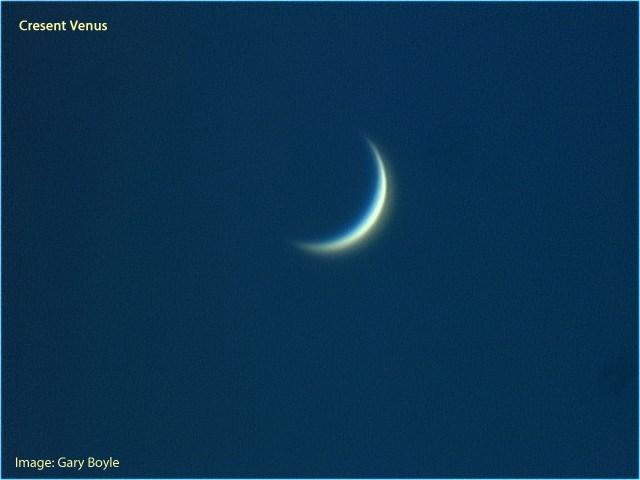 2020 Crescent Venus