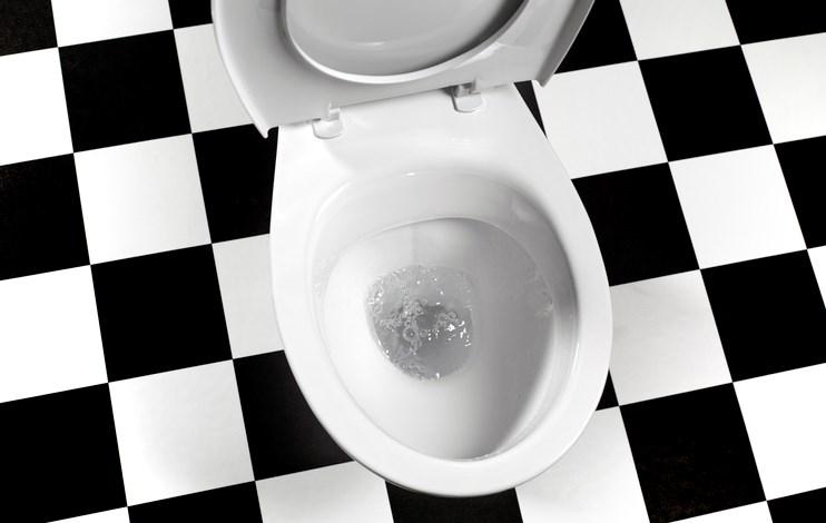 Toilet-credit PeterDazeleyGettyImages