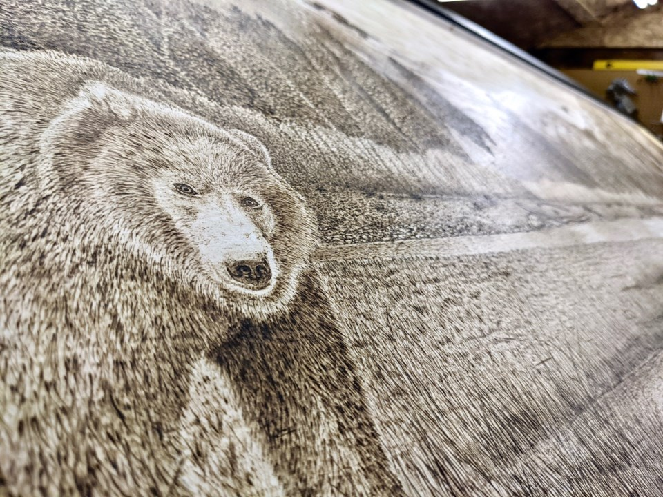 Grizzly bear pyrography