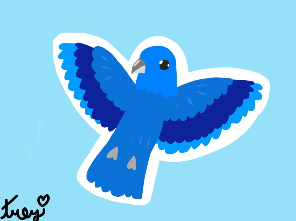 Computer image of a blue bird with wings open