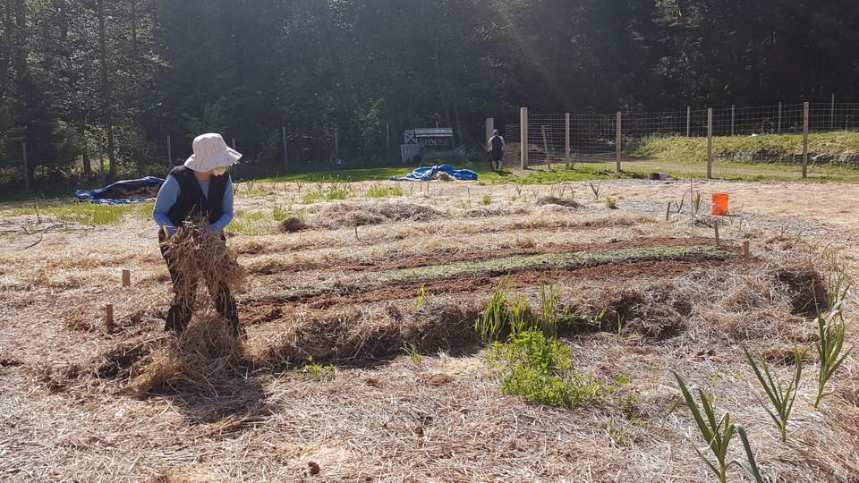Jackie Bradley with mulch