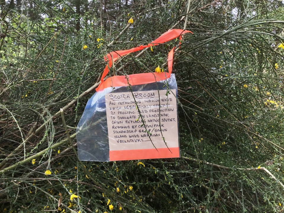 Sign on a flowering plant ripped up