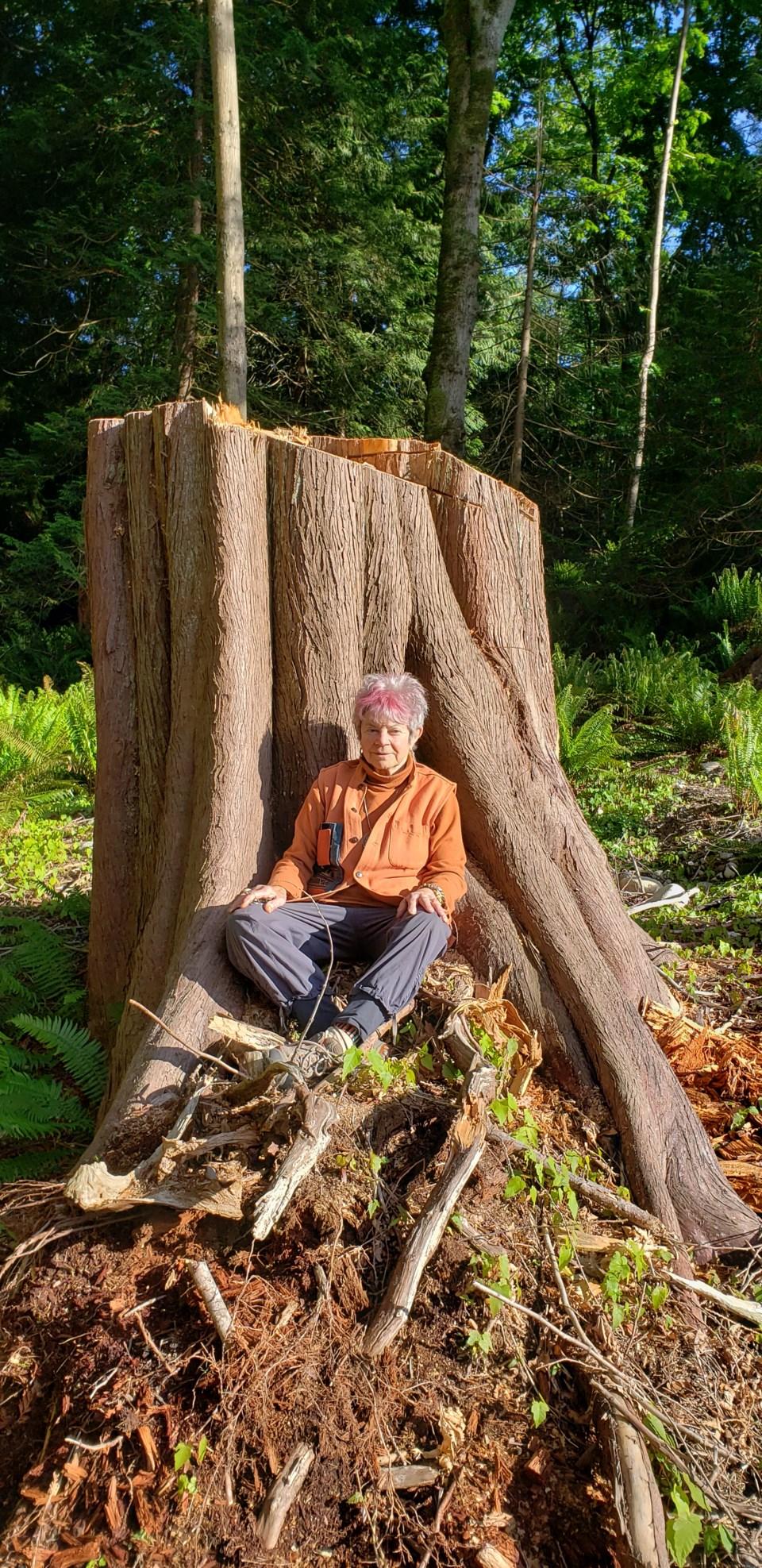 Kami sitting at the base of a tree