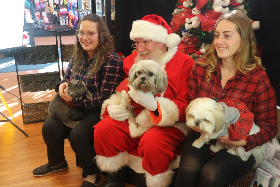 The Joy Of Christmas Unleashed At Pet Valu S Santa Photos 7 Photos Bradfordtoday Ca