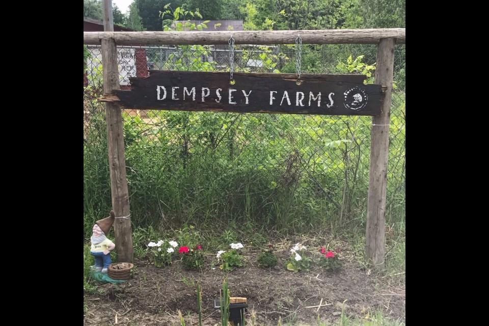 Dempsey Farms, Innisfil