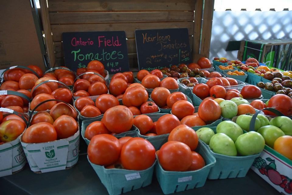 2018-08-08-holland marsh food market2