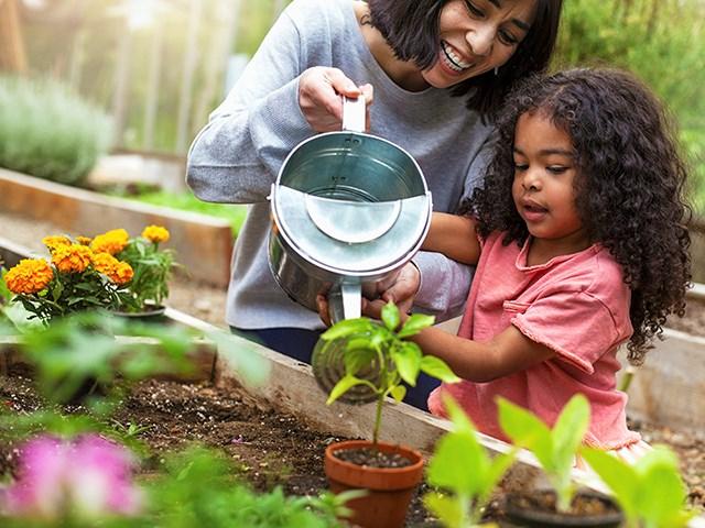 PH-Gardening may20