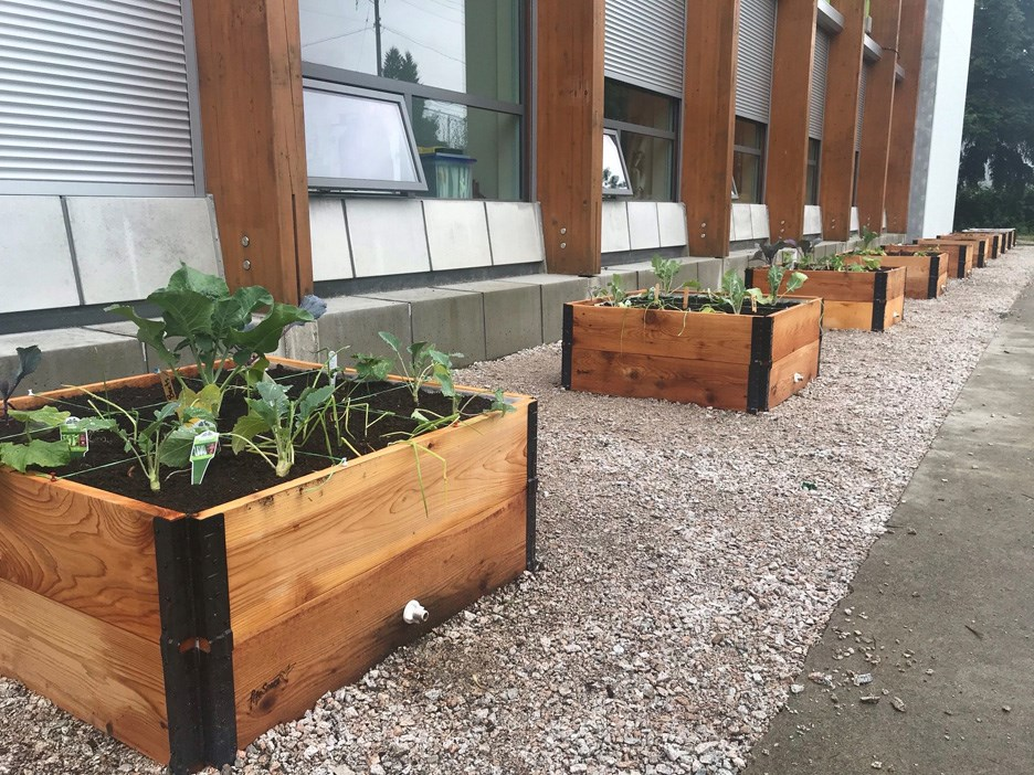 community garden web